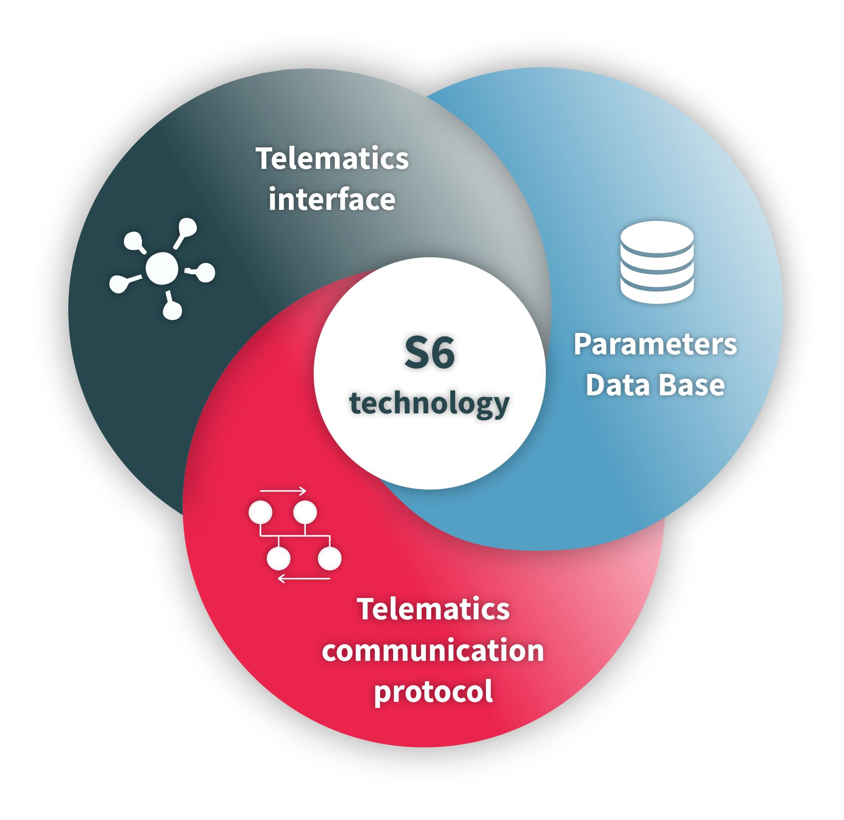 Elements of S6 technology